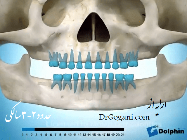 نظارت بر رویش دندان
